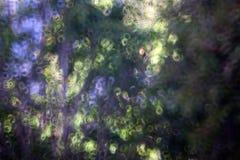 Abstrakt munkbokehbakgrund Royaltyfri Foto