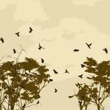 Abstrakt naturbakgrund Royaltyfri Foto