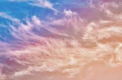 Abstrakt naturbakgrund Royaltyfria Bilder