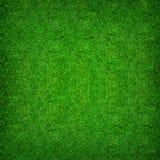 Abstrakt naturlig bakgrund av modell- och texturbakgrund för grönt gräs Arkivfoto
