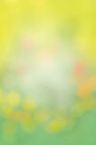 Abstrakt naturlig bakgrund för guling och för gräsplan Fotografering för Bildbyråer