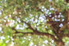 Abstrakt naturlig färgbakgrund Royaltyfria Foton