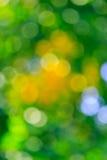 Abstrakt naturlig guling och grön suddig bakgrund Arkivbilder