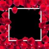 Abstrakt naturlig Rose Petals Frame Background Realistic vektor I stock illustrationer