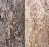 Abstrakt naturlig stenbakgrund Arkivfoton