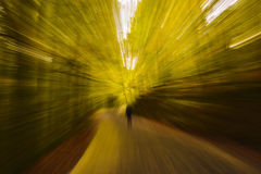 Abstrakt oskarp gul nedgångskog Arkivbild