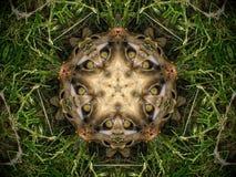 Abstrakt päls- och gräsmandala Royaltyfri Foto