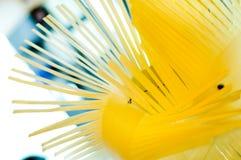 abstrakt prydnad Royaltyfria Bilder