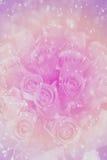 Abstrakt róży kwiat z bokeh tłem zrobił pastelowi Zdjęcia Royalty Free