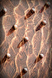 Abstrakt röd bakgrund, texturerad fastnitad metall Arkivfoto
