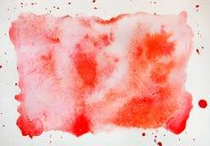 Abstrakt röd vattenfärg på vit bakgrund Vattenfärgfläck för arkivbild