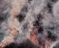 abstrakt rök Fotografering för Bildbyråer