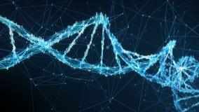 Abstrakt rörelsebakgrund - ögla för molekyl 4k för Digital binär PlexusDNA lager videofilmer
