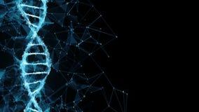 Abstrakt rörelsebakgrund - ögla för molekyl 4k för DNA för Digital binär polygonPlexus lager videofilmer
