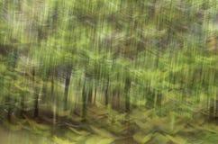 Abstrakt rörelsesuddighet, trädstam & tjänstledigheter, backgrou för gul gräsplan Arkivfoto