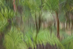 Abstrakt rörelsesuddighet, trädstam & tjänstledigheter, backgrou för gul gräsplan Arkivfoton