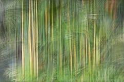 Abstrakt rörelsesuddighet, trädstam & tjänstledigheter, backgrou för gul gräsplan Fotografering för Bildbyråer