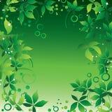 abstrakt ram Royaltyfri Foto