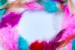 Abstrakt ram av kulöra fjädrar Royaltyfria Foton