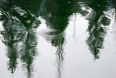 Abstrakt reflexion av träd i den stilla sjön med krusningar på regnig dag Royaltyfri Bild