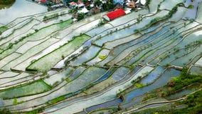 Abstrakt risterrasstextur med himmelreflexion Banaue Filippinerna Royaltyfri Fotografi