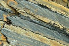 Abstrakt Rockowa tekstura 04 Zdjęcie Stock