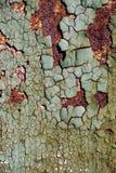 Abstrakt rostig textur med en sprucken grön målarfärg, ark av rostig metall med sprucken och flagig målarfärg, vertikal rostig me Royaltyfria Foton