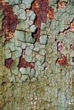 Abstrakt rostig textur med en sprucken grön målarfärg, ark av rost Arkivfoto