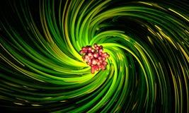Abstrakt roterande rörelse av sidor för tropisk växt Royaltyfria Foton