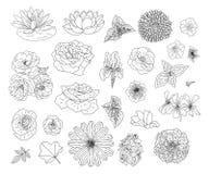 Abstrakt samling med blommor i klotterstil f?r designen f?r f?rgl?ggningbok och garnering, br?llop, h?lsningkort Boksida stock illustrationer