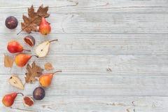 Abstrakt sammansättning av nya mogna frukter och sidor på en vit Arkivfoton