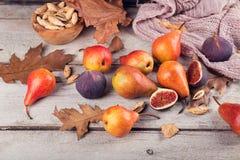 Abstrakt sammansättning av nya mogna frukter och sidor på en vit Royaltyfri Fotografi
