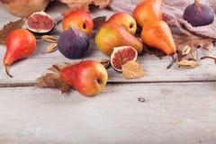 Abstrakt sammansättning av nya mogna frukter och sidor på en vit Royaltyfria Bilder
