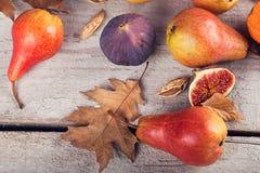 Abstrakt sammansättning av nya mogna frukter och sidor på en vit Arkivbilder