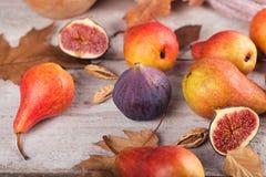 Abstrakt sammansättning av nya mogna frukter och sidor på en vit Fotografering för Bildbyråer