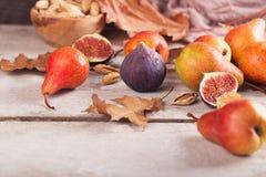 Abstrakt sammansättning av nya mogna frukter och sidor på en vit Arkivfoto