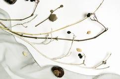 Abstrakt sammansättning med torkduken som är torr Royaltyfri Fotografi
