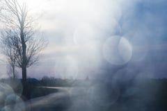 Abstrakt sammansättning med trädet, vägen och bokeh Arkivfoton