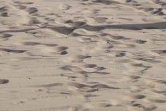 Abstrakt sandbakgrund från den tropiska stranden Royaltyfri Foto