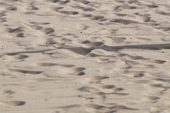 Abstrakt sandbakgrund från den tropiska stranden Royaltyfri Bild