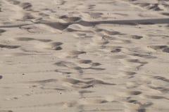 Abstrakt sandbakgrund från den tropiska stranden Royaltyfria Foton