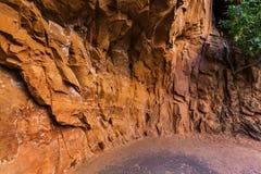 Abstrakt sandstenvägg, USA Arkivfoto