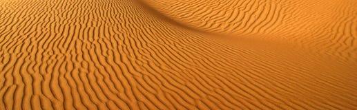 abstrakt sandwaves arkivfoto