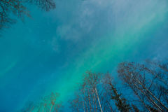 Abstrakt sikt av nordliga ljus som ser rakt övre royaltyfri foto