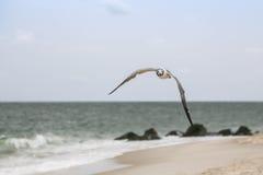 abstrakt sikt för fågelögonliggande Royaltyfri Fotografi