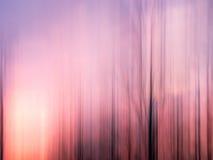 Abstrakt solnedgång med träd Royaltyfri Bild