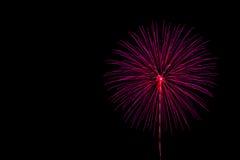 abstrakt spectrum för brandblommapetals Fotografering för Bildbyråer