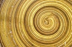 abstrakt spiralt trä Royaltyfria Bilder