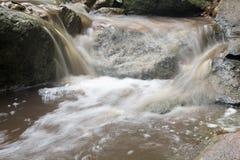 Abstrakt sten med vattenfallet och det härliga gröna bladet Arkivfoto
