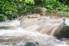 Abstrakt sten med vattenfallet och det härliga gröna bladet Arkivbild